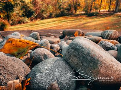 A Rocky Fall