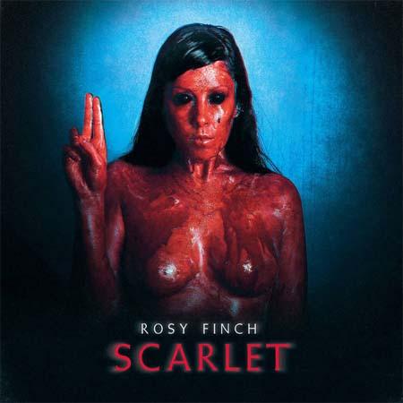Rosy Finch