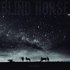 Blind Horse (Patagonia)