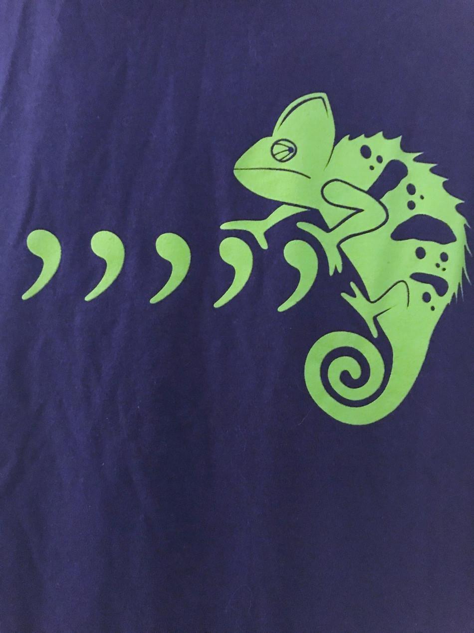 Comma, not Karma, Chameleon