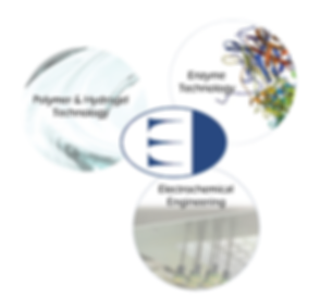 Ectica Technologies core technologies