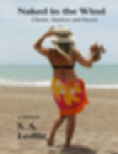 Naked in the Wind memoir book cover