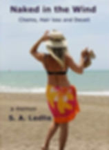 new cover for naked_edited_edited.jpg