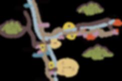 周辺地図@144x.png