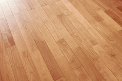 サクラの床