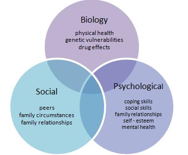 Le modèle biopsychosocial : qu'est-ce?