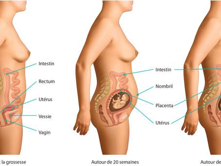 Grossesse et posture