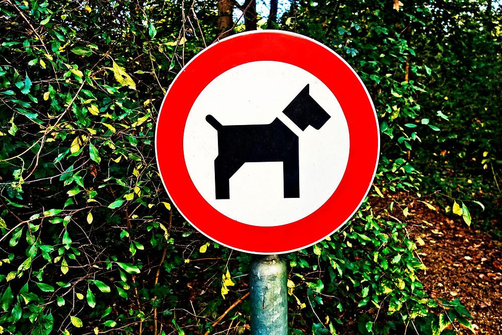 Hund verboten Schild