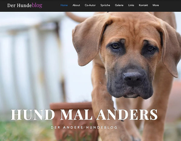website-der-hundeblog-titelbild_edited.j