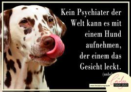 Der Hund, Dein Psychiater