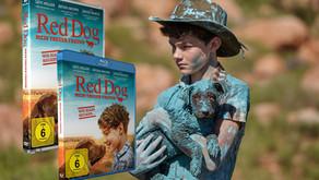 Ein toller Hundefilm und das perfekte Last-Minute-Geschenk