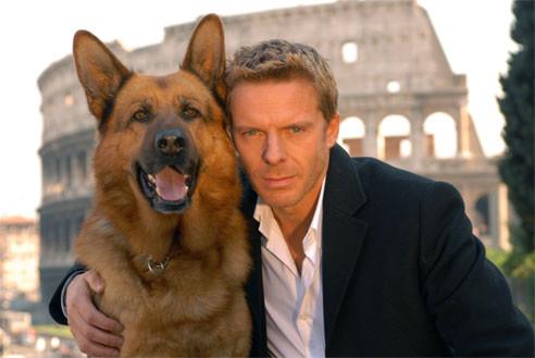 Schäferhund - Kommissar Rex -Fernsehhund