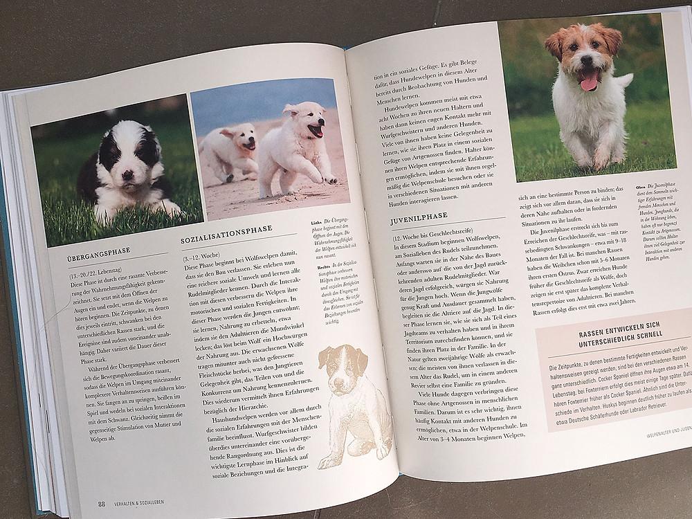 Der Hund - Nachschlagwerk für Hunde