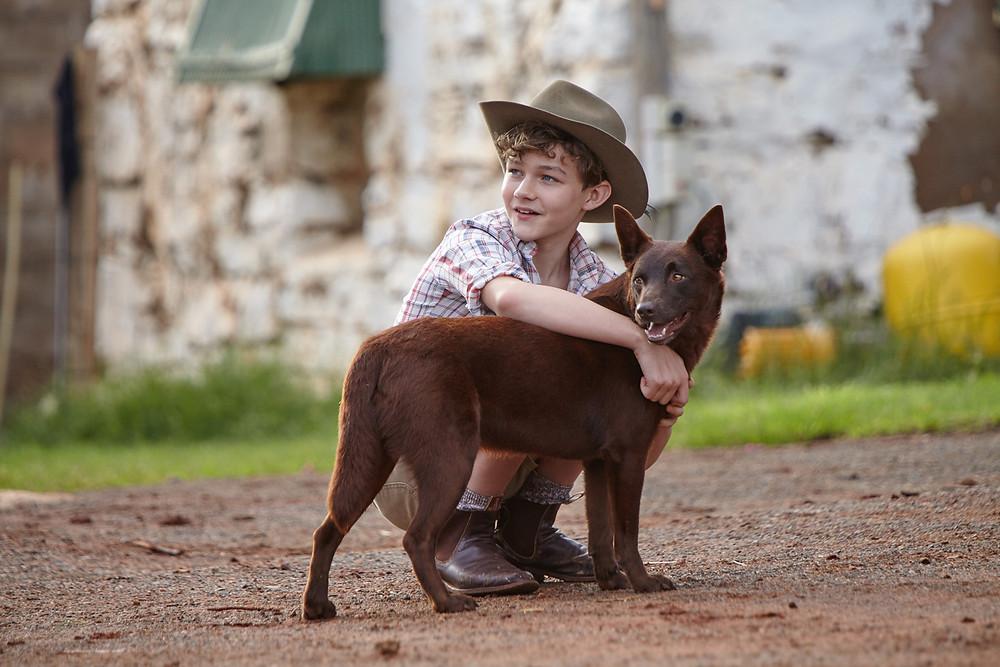 freundschaft Kind und Hund