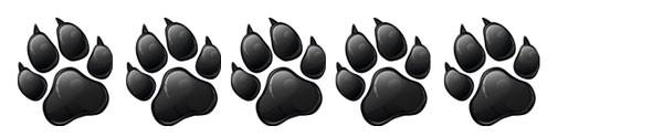 Produkttest-Wertung für Furbo-Hundekamera