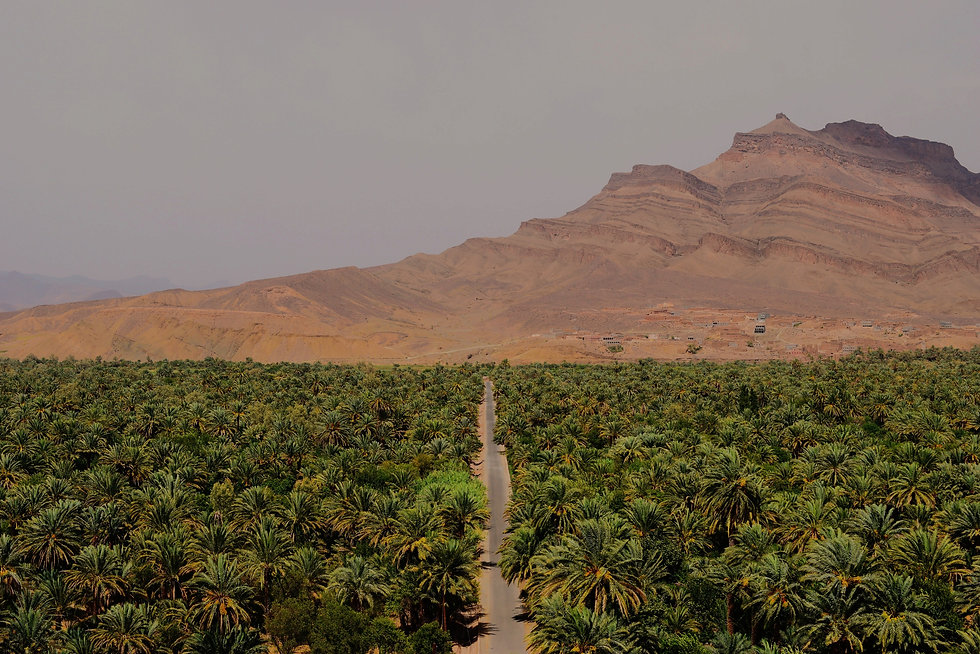 Whilst%20on%20a%20tour%20through%20the%20Moroccan%20desert%2C%20we%20stopped%20to%20overlook%20the%2
