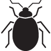 bed-bug-icon.png