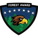 content_hawk-forest.png