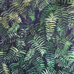 Local Ferns