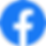 Facebook_Logo_(2019)-1.png