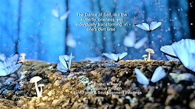 insta butterfly group -2049567.jpg