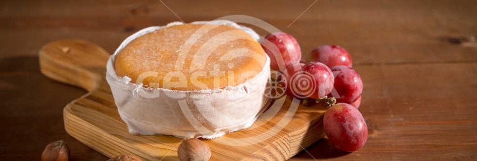 Queijo de Serpa