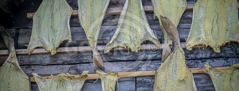 Bacalhau a secar