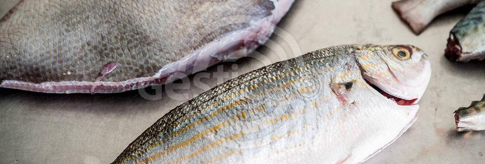 Peixe no mercado