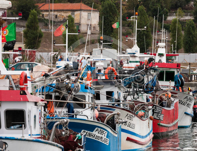 Barcos portugueses