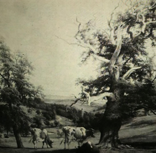 No 475  1855.jpg