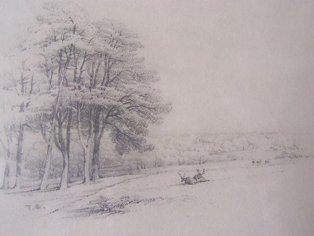 Thomas Baker, Stoneleigh Park.JPEG