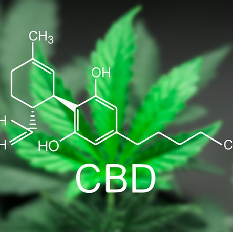 Everything You Need To Know About DiamondCBD