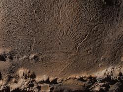 16-Prehistoric Mud Glyphs