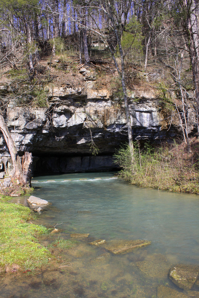 Martin Springs, Tennessee