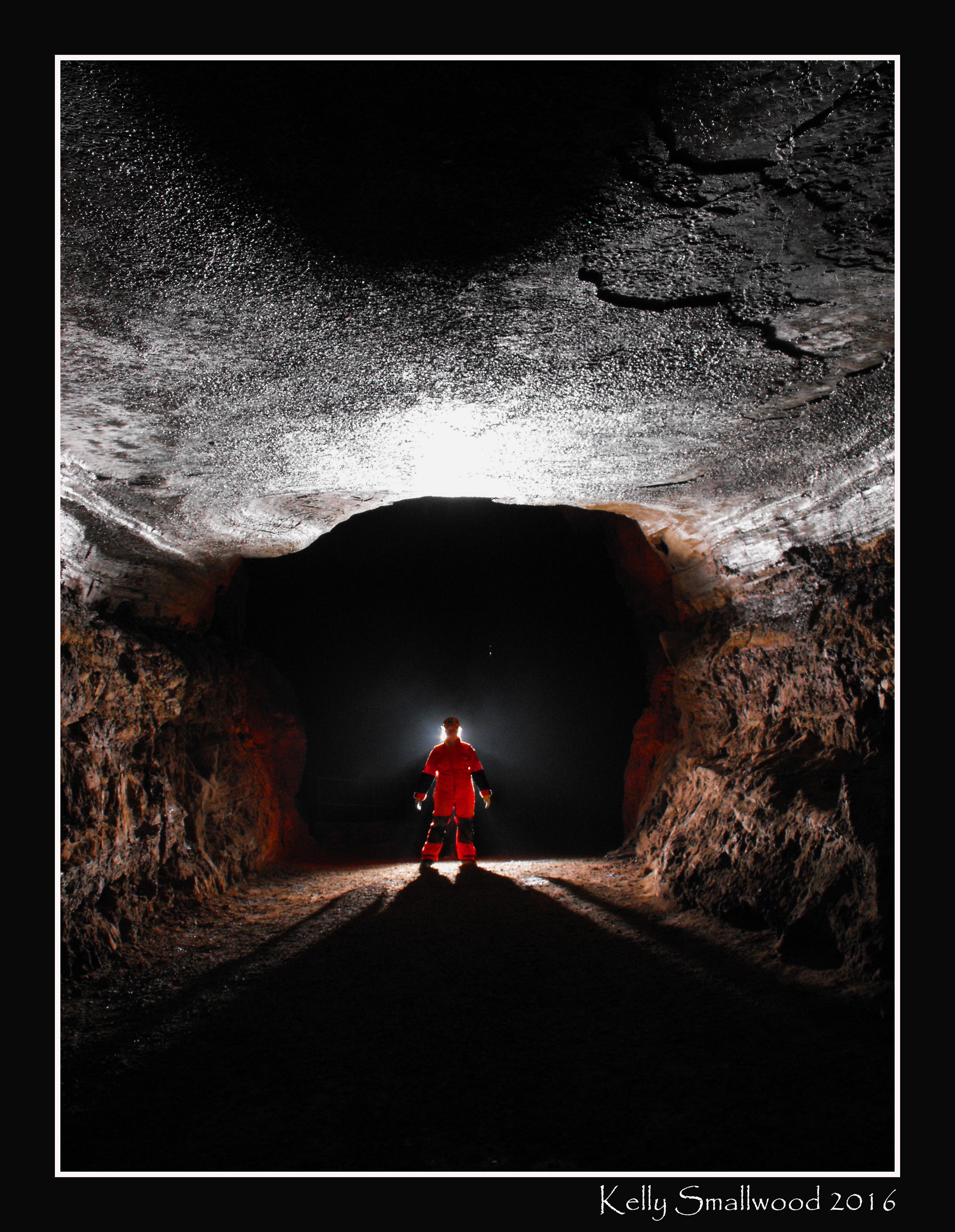Motlow Cave, Lynchburg, TN