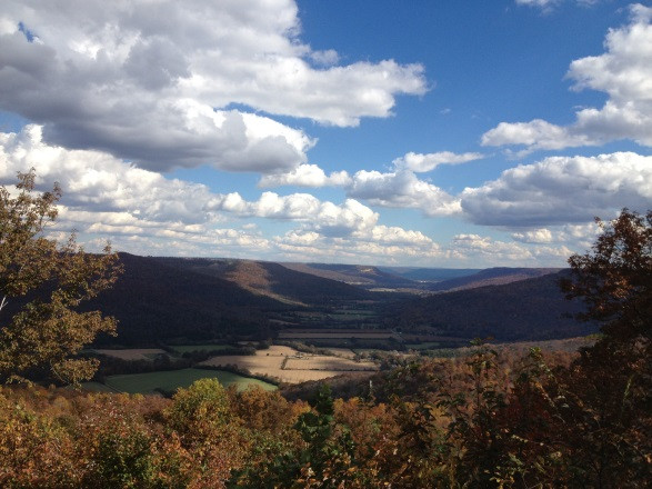 Noteworthy Hike in TAG: Franklin State Forest, Tennessee