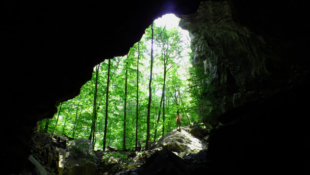 The Caves of Sinking Cove, Franklin County, Tennessee