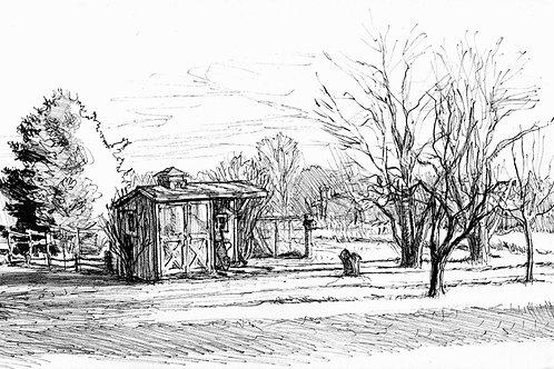 Havlicek Backyard