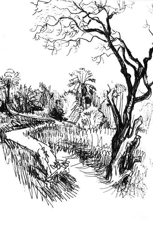Igran Path