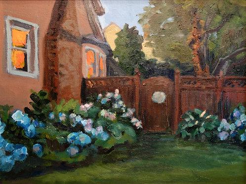 Hydrangeas in Grindon Side Yard