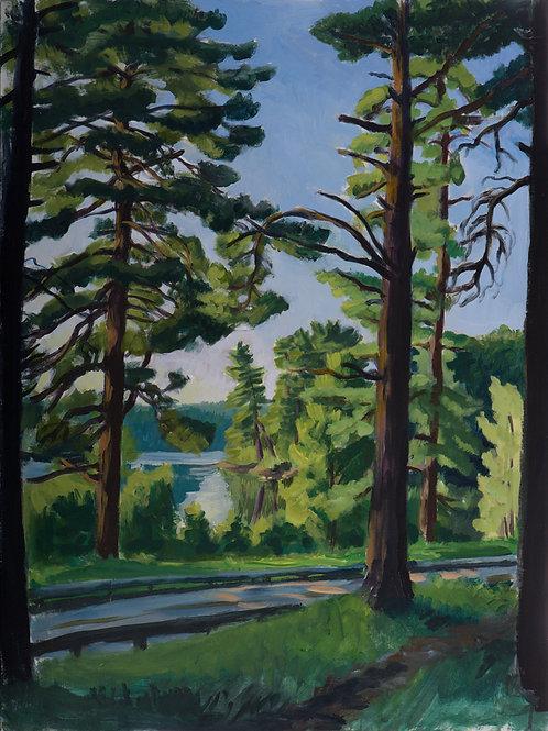 Loch Raven Pines