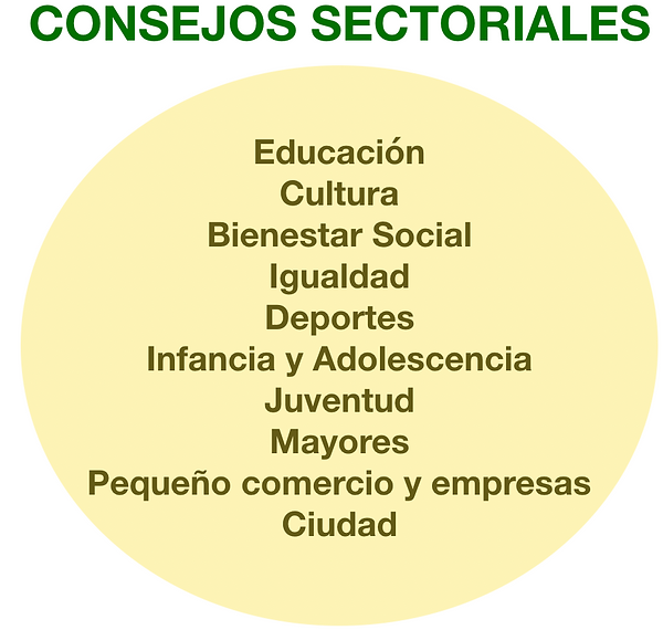 consejos secotriales.png