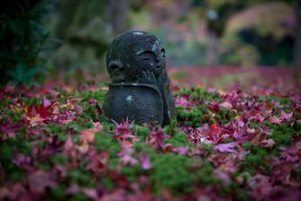 秋の京都旅