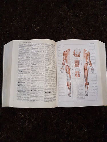 Larousse médical illustré