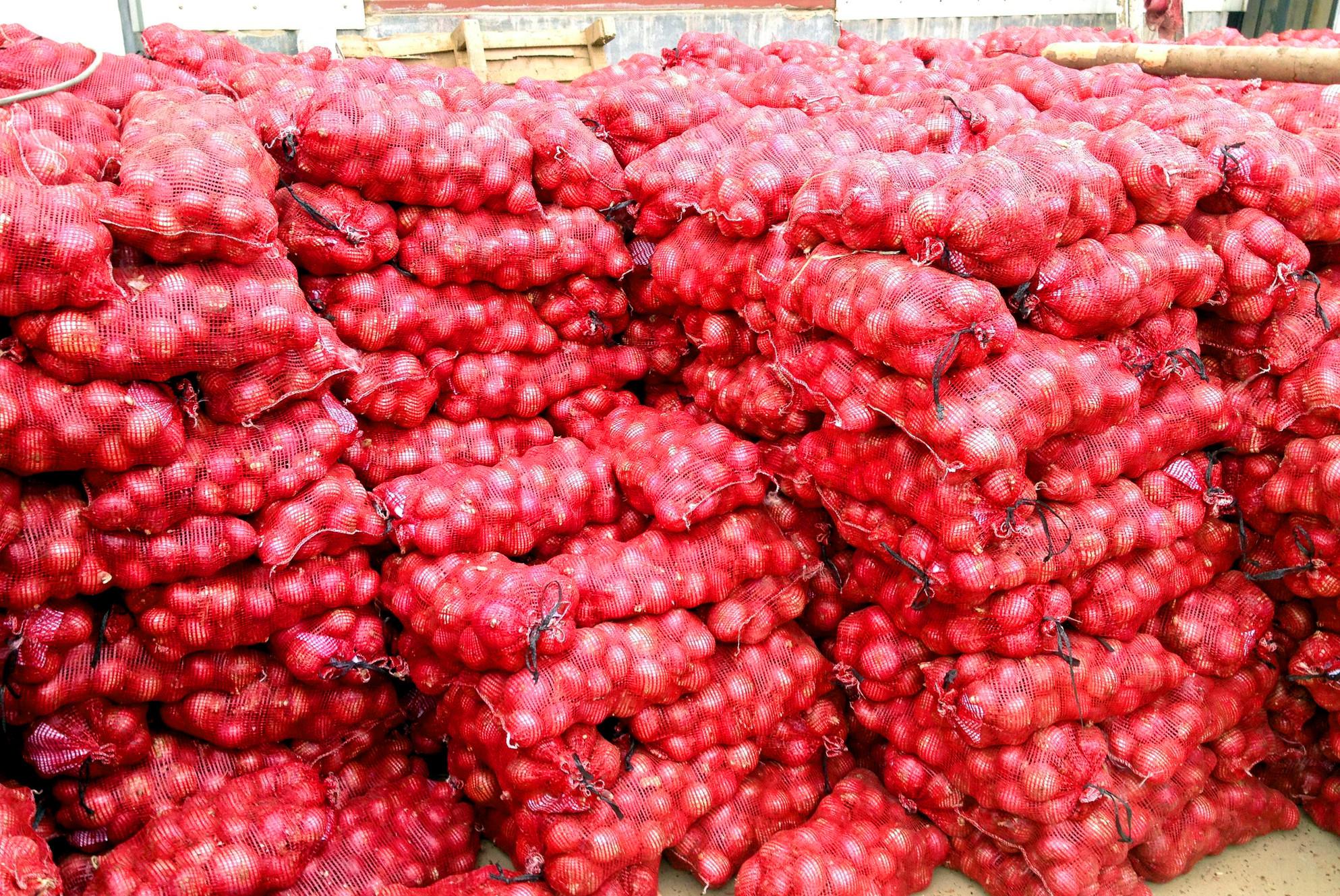 Onion and Potato Wholesaler | SC Wholesale
