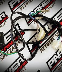 Pit Bike Race Digital CDI 2 Plug Wiring Loom