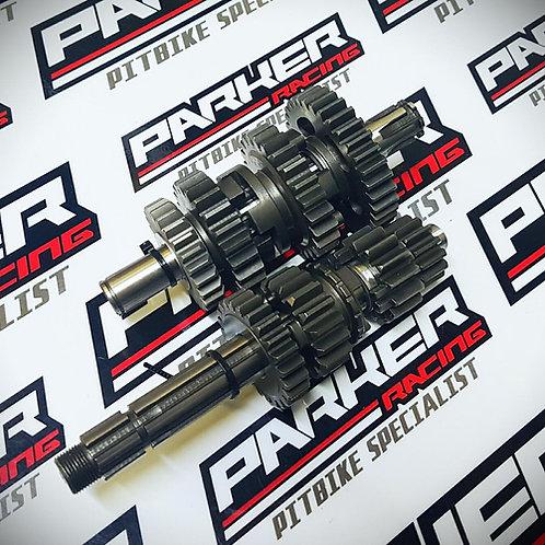 Bucci Daytona Racing Gearbox