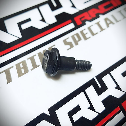 Z155 Timing Chain Guide Bolt