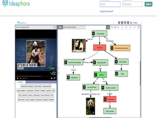 כלי לארגון למידה Ideaphora