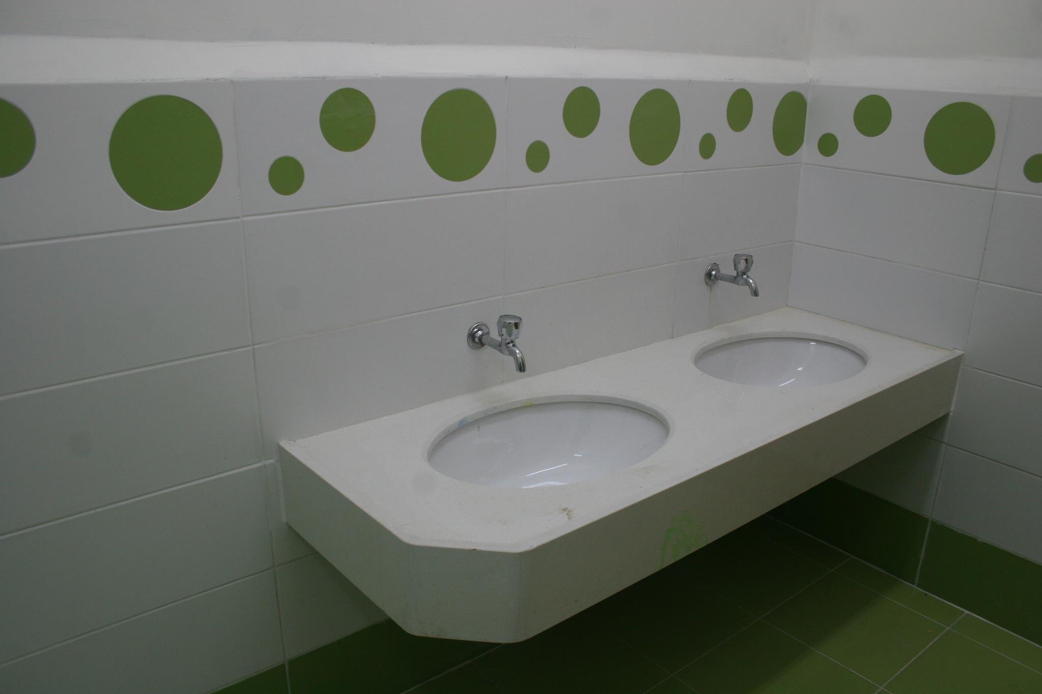 צבעים עיזים בשירותים